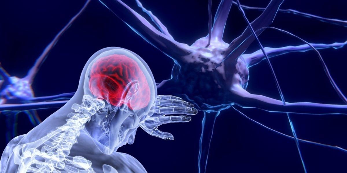 Hoe het komt dat het zenuwstelsel vaak overprikkeld is.