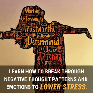 Master your stress-level 2-day online live course (ENG)